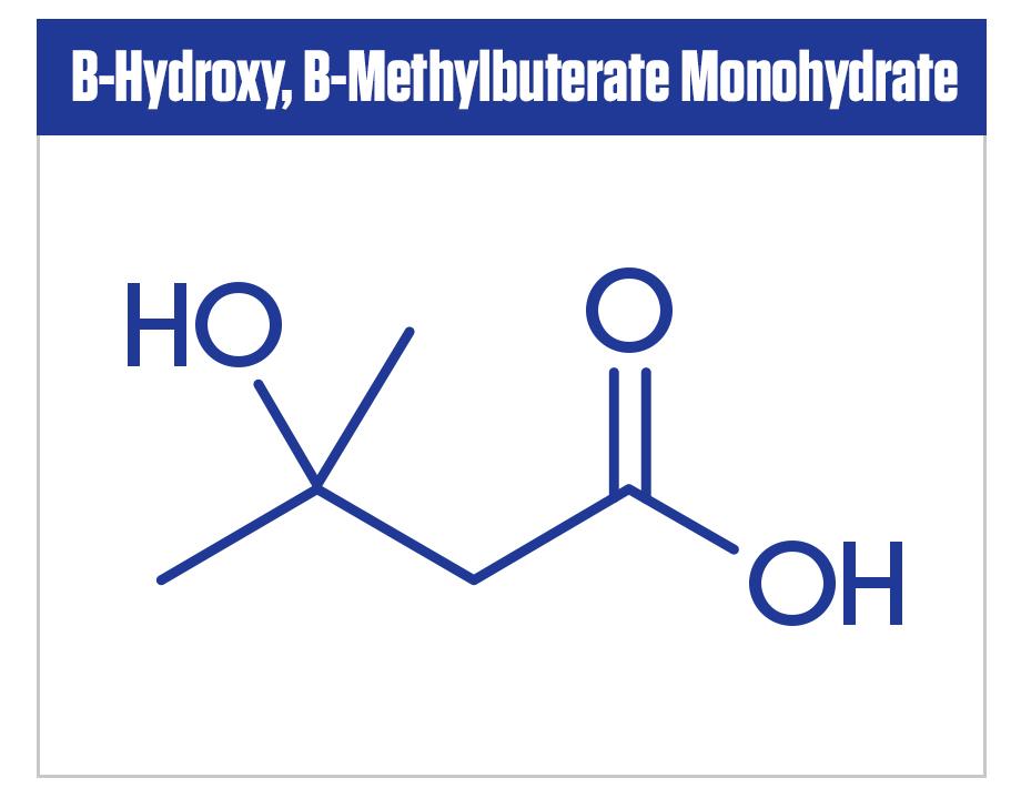 Image of HMB molecule in Betabol